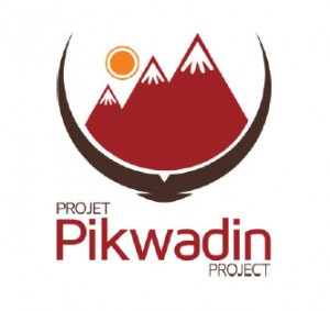 Pikwadin Project Logo
